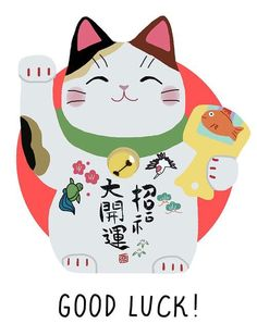 Good luck Japanese kitty- I want one! Maneki Neko, Neko Cat, Crazy Cat Lady, Crazy Cats, I Love Cats, Cool Cats, Cats And Kittens, Ragdoll Kittens, Funny Kittens