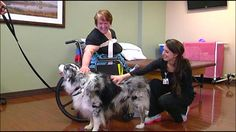 Southern Hills offers pet therapy as way to ease patient's minds - WKRN, Nashville News, Nashville Weather and Sports