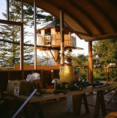 It was the spring of 2014 when Foster Huntington decided to chase his childhood dream. Soon, he began building a fairytale-like treehouse that he has been fantasizing about for years but the project he planned to spend a few months on ended up taking most of the year.
