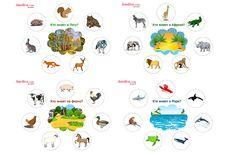 Игра про животных, карточки животные, карточки для детей