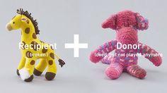 Stuffed Animals Get Limb Transplants to Help Teach Kids About Organ Donation
