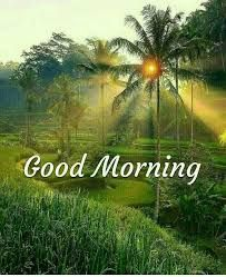 Nature Good Morning Images photo pics download & share Good Morning Beautiful Pictures, Good Morning Images Flowers, Good Morning Nature, Latest Good Morning Images, Good Morning Funny, Good Morning Photos, Good Morning Greetings, Good Morning Good Night, Morning Pictures