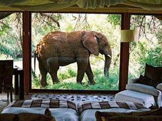 Tanzania. My dream vacation.