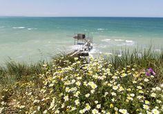 La Riserva di Punta Aderci di Vasto (Ch) è tutta in fiore!  Passeggiare in questo scenario è un toccasana per il corpo e per la mente, vero? Foto Abruzzo Parks