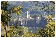 Badia di Passignano (Benedictine abbey) on the outskirts of Greve in Chianti - Italy