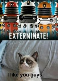 Grumpy cat and the Daleks