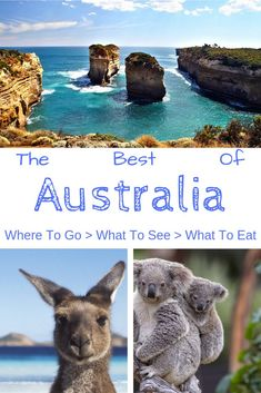 For anyone that decides to travel or go backpacking in Australia, this guide is for you. Sydney, Melbourne, the Outback and so much more is on offer in this amazing country. This travel guide will ensure you are not short of inspiration or things to do in Australia #travel #Australia #Sydney#Melbourne