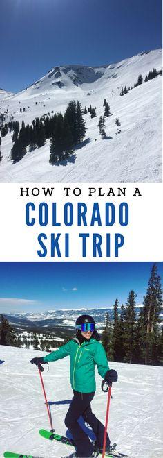 Telluride Colorado Snow Ski Travel Poster Brittany Spaniels Pin Up Art Print 328