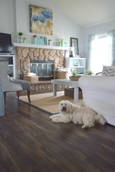 teddy in living room, Spring home tour with simple ideas, crafts, DIY projects. All with bold colors and a coastal/rustic look to the home.