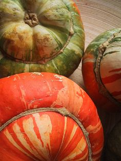 These turban squash are unbelievably delicious. After Thanksgiving cut in parts, take seeds out and cook like you'd cook acorn squash.