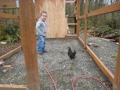 Feathered Landingss Chicken Coop Tons Of Progress Pictures Walk In Chicken Coop, Building A Chicken Coop, Chicken Runs, Chook Pen, Raising Chickens, Chickens Backyard, Coops, February, Pictures