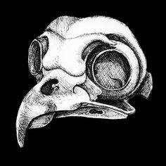 Sketch in ink of bird skull by Claudia Sturgeon