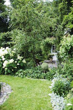 Lovely garden border