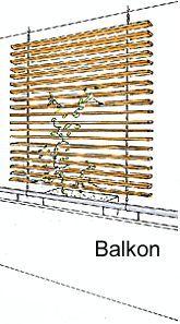 ... Rankgerüst für Kletterpflanzen für Terrasse oder Balkon als Verschattungssystem - Bauanleitung