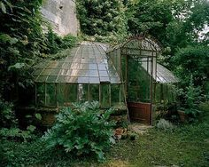 Overgrown Victorian conservatory/greenhouse in the United Kingdom Victorian Greenhouses, Victorian Conservatory, Conservatory Garden, Greenhouse Gardening, Greenhouse Film, Gardening Direct, Greenhouse Plans, Herb Gardening, Gardening Hacks