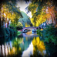 Canal du Midi in beautiful light in France. Canal Holidays, Monuments, Le Canal Du Midi, French Trip, Ville Rose, Marseille France, Sailboat Art, Destinations, Canal Boat