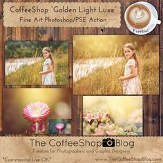Freebies and Tutorials for Photographers and Digital Designers for Photoshop, Photoshop Elements, and Lightroom. Photoshop For Photographers, Photoshop Tips, Photoshop Tutorial, Lightroom, Action Photography, Photoshop Photography, Photoshop Elements Actions, Photo Editing Tools, Make Photo