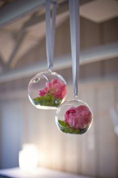 hanging flowers - would do moss w/ white/yellow flowers or succulents