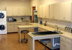 White River Veterinary Clinic - veterinary hospital treatment room
