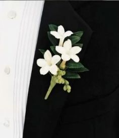 stephanotis boutonniere -- guys will have something like this