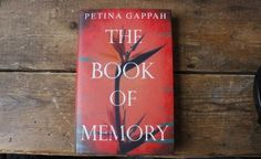 The book of Memory, by Petina Gappa