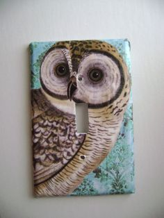 Cute Owl Light Switch Cover. Colorful and fun light switchplate covers that bring a room alive. These fun and eye catching switch plate covers