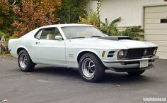 1970 Ford Mustang Boss 429 Fastback Maintenance/restoration of old/vintage vehicles: the material for new cogs/casters/gears/pads could be cast polyamide which I (Cast polyamide) can produce. My contact: tatjana.alic@windowslive.com