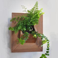 Vertical Garden Wall Plant Holder Terrarium Air By Jacquiesummer | Ride  Plants | Pinterest | Vertical Garden Wall, Glass Terrarium And Terraria