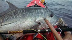 #Mr Pole Benda on my kayak , I'm sore  kayak fishing Like, Repin, Share, Follow Me! Thanks!
