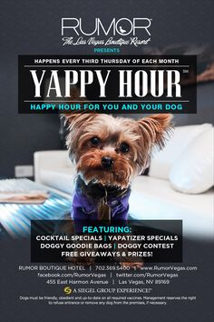 yappy hour a fun place pups people have doggy treats snacks and some sort of contest find this pin and more on apartment marketing ideas