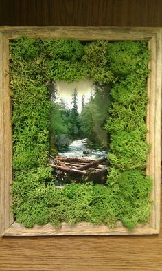Home Decor Industrial Rustic moss frame with picture from the Olympic Peninsula WA. Decor Industrial Rustic moss frame with picture from the Olympic Peninsula WA. Succulent Wall Art, Plant Wall, Plant Decor, Moss Wall Art, Moss Art, Moss Garden, Garden Art, Indoor Garden, Indoor Plants