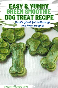 Smoothies are such a fun, summery drink that's amazingly healthy too. I don't know about you, but even though I try, I know I'm not getting enough greens in my life. Since I'm trying to improve this, I figured why not create some tasty green smoothie dog treats while I'm at it?! This awesomely healthy green smoothie recipe makes a delicious treat for you and your dog! Puppy Treats, Diy Dog Treats, Homemade Dog Treats, Healthy Dog Treats, Healthy Green Smoothies, Green Smoothie Recipes, Easy Dog Treat Recipes, Dog Food Recipes, Hypoallergenic Dog Treats