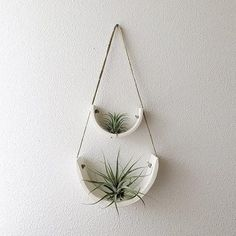 Air Plant Cradle - Small (more options)