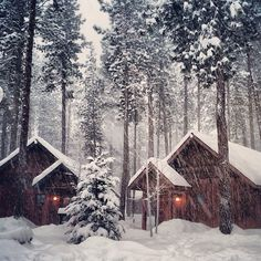 dreams of cabins, fires, snow, wind, and frost