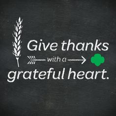 Thank you. ALL of you, for making Girl Scouting possible!