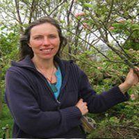 Attuning to Plants - using 'Goethian Contemplative' techniques with Maureen Robertson (Scotland).