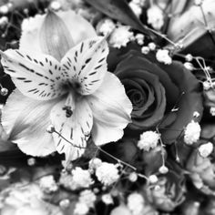 B&W image of some bright coloured flowers on my mums grave.