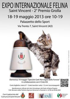 Expo Internazionale Felina di Saint Vincent (Ao) - il 18-19 Maggio 2013