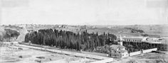 Cimitero Acattolico (1900 ca) Old Photos, Paris Skyline, Rome, Statue, History, World, Travel, Painting, Outdoor