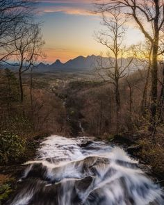 The best hikes in all 50 US states. These hikes were contributed by local travel bloggers, and cover the best hiking that the US has to offer. USA hikes | Hiking US | Best hikes USA | Georgia hiking | East Ridge Loop Trail | Amicalola Falls State Park | Amicalola Falls Amicalola Falls, Hiking Usa, Cloudland Canyon, Georgia State Parks, Backpacking Trails, Valley Of Fire, Continental Divide, Us National Parks, Rocky Mountain National Park