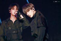 💕 Do not crop the logo Mingyu Wonwoo, Seungkwan, Woozi, Hiphop, Seventeen Vlive, Big Group, Best Kpop, Meanie, Pledis 17