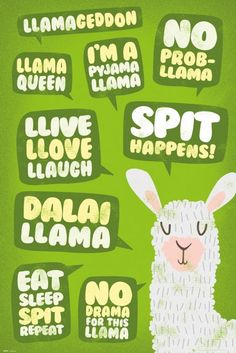 Buy Llama Maxi Poster - Quotes online and save! Llama Maxi Poster – Quotes Maxi Poster 61 × Our posters are rolled, wrapped and shipped in poster mailing tubes Llama Drawing, Drawing Animals, Llama Pajamas, Funny Llama, Llama Llama, Llama Print, Budget Book, Light Of Life, Cool Pets