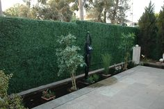 artificial hedges - Google Search