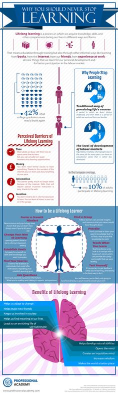 The Lifelong Learner Infographic explores why you should never stop learning, barriers of lifelong learning, benefits and tips for lifelong learners.