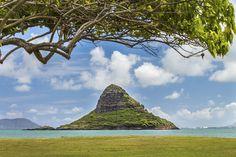 The 10 Best Oahu Tours, Excursions & Activities 2017 Kailua Hawaii, Kauai, Hawaii Travel, Hawaii Tours, Big Island, Planet Earth, Beautiful Places, Beautiful Scenery, Monument Valley