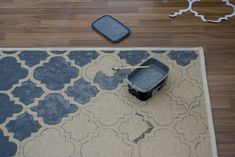 DIY- RUG: Buy a plain cheap rug, then stencil & paint! Not sure I'll ever have the time to do this, but it's a great idea!