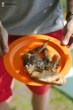 wegetariański grill - grillowane boczniaki