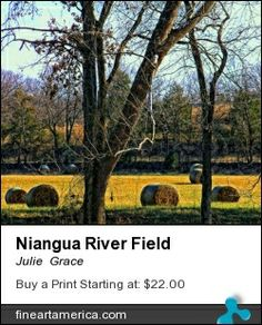Photograph of rolled hay in a field by the Niangua River, Mo.