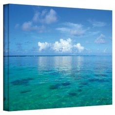 Lagoon and Reef by George Zucconi Canvas Art
