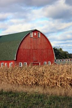 Red Barn By Corn Field